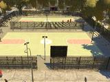 Rubin Swinger Basketball Courts