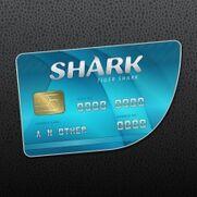 SharkCard-Tiger.jpg