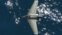 Starling-GTAO-Top