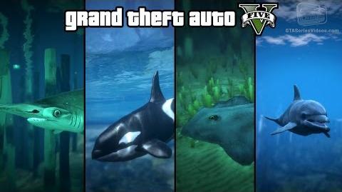 GTA 5 - Play as a Fish (Shark, Dolphin, Orca, Stingray & more) PS4 & Xbox One