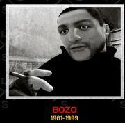 Bozo-TLaD