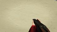 DoubleBarreledShotgun-GTAO-FPVAiming
