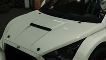 FlashGT-GTAO-RaceHood.png