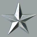 FortZancudoColonel-GTAV-Insignia