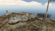 MovieProps-GTAO-Location7.png