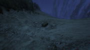 HiddenCaches-GTAO-Location97.png
