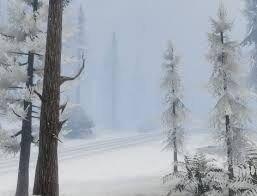 PaletoForest-GTAV-Snow