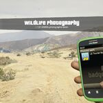Wildlife Photography Challenge GTAVe Photo Sent.jpg