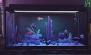 VanillaUnicorn-GTAV-FishTank