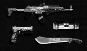 TheCayoPericoHeist-GTAO-PrepBoardImg-WeaponLoadout-05Marksman.png