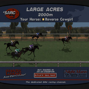 Horse betting san andreas africa sport betting