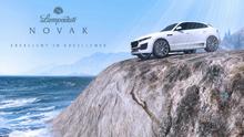 NovakWeek-GTAO-Advert