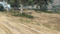 BikerSellCourierService-GTAO-Countryside-DropOff4.png