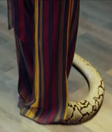 GUARDIAN Zhu Hong's Snake Yashou tail Ep1-9m48s