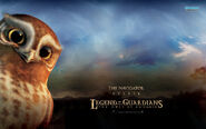 Gylfie-the-owls-of-gahoole-10092-1280x800