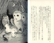Soren - The Capture Japanese