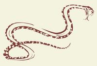 Flying snake.png