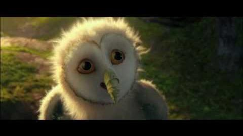 Legend of the Guardians The Owls of Ga'Hoole - FULL LENGTH TRAILER