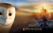 Soren-the-owls-of-gahoole-10245-1920x1200
