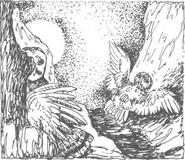 Coryn meets otulissa