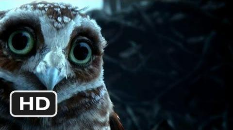 Legend of the Guardians The Owls of Ga'Hoole 3 Movie CLIP - Name's Digger (2010) HD