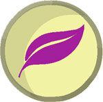 Piwi Pirates logo