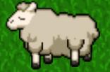 78 Sheep lvl 7.png