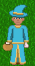 13 Wizard lvl 17.png