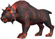 1 新寵物 巴薩澤之犬