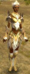 Armure de Norn-Parangon-Femme.jpg
