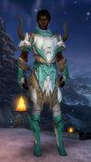 Armure de Norn-Parangon-Homme.jpg