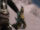Ceste farouche (griffe)