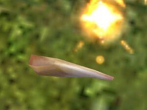 Corne convexe de Minotaure