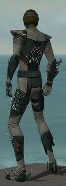 Assassin Seitung Armor M gray back.jpg