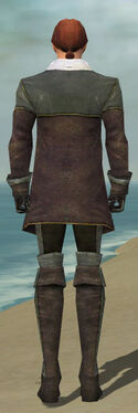 Mesmer Tyrian Armor M gray back.jpg