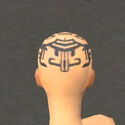Monk Ancient Armor F gray head back.jpg