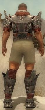 Warrior Asuran Armor M gray chest feet back.jpg