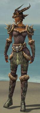 Warrior Charr Hide Armor F gray front.jpg