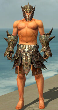 Warrior Monument Armor M gray arms legs front.jpg