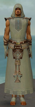 Dervish Istani Armor M gray front.jpg