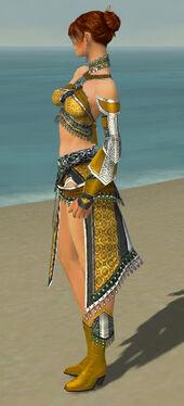 Elementalist Elite Luxon Armor F dyed side.jpg