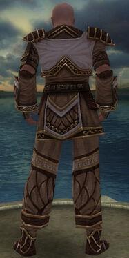 Monk Elite Canthan Armor M gray back.jpg