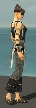 Monk Elite Sunspear Armor F gray side.jpg