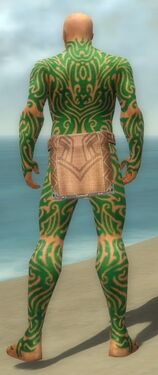 Monk Flowing Armor M dyed back.jpg