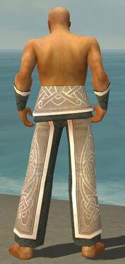 Monk Tyrian Armor M gray arms legs back.jpg
