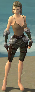 Ranger Elite Fur-Lined Armor F gray arms legs front.jpg