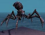 Spider Form effect.jpg