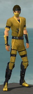 Assassin Shing Jea Armor M dyed front.jpg