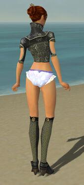 Elementalist Canthan Armor F gray chest feet back.jpg