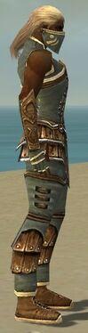 Ranger Shing Jea Armor M gray side alternate.jpg